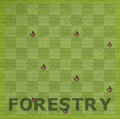 Forestry room.png